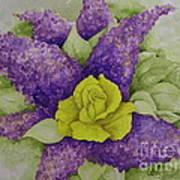 A Rose Among The Lilacs Art Print