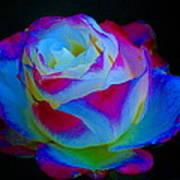 A Rose Enhanced Art Print