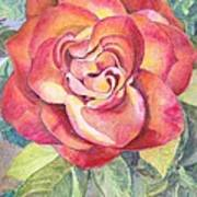 A Rose For Mom Art Print
