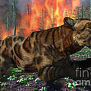 A Saber-toothed Tiger Running Away Art Print