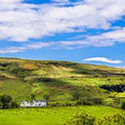 A Scottish Hillside Art Print