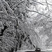 A Snowy Drive Through Chestnut Ridge Park Art Print