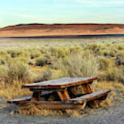 A Solitary Wooden Picnic Bench Art Print