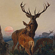 A Stag With Deer In A Wooded Landscape At Sunset Art Print