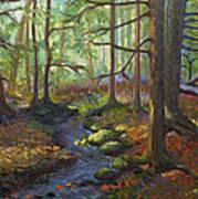 A Stream Of Light Art Print