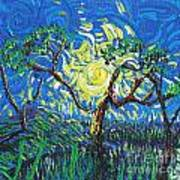 A Sunny Day For The Tree Art Print