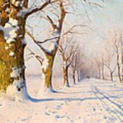 A Sunny Winter's Day Art Print