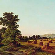 A Surrey Cornfield Art Print by Walter Williams