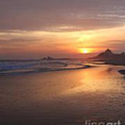 A Swift Sunset Art Print