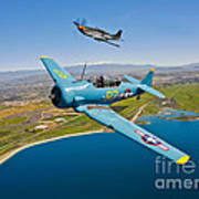 A T-6 Texan And P-51d Mustang In Flight Art Print