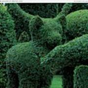 A Topiary Bear In Alice Braytons Green Animals Art Print