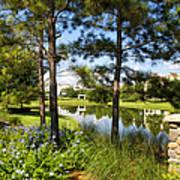 A Tranquil Pond At Walt Disney World Art Print