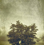 A Tree In The Fog 2 Art Print