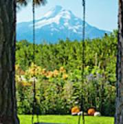 A Tree Swing Is Seen On A Summer Day Art Print
