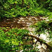 A View Of Eagle Creek Art Print