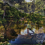 A View Of The Nature Center Merged Image Art Print