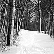 A Walk In Snow Art Print