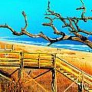 A Walk On Atlantic Beach Art Print