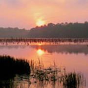 A Wetlands Sunrise Art Print by JC Findley