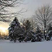 A White Winter's Morning Art Print