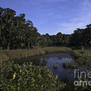 A Wide Expanse Of Marsh Art Print