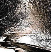 A Winter Stream 2 Art Print