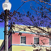 A Winters Day In Florida Art Print