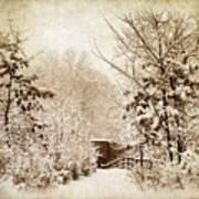 A Winter's Path Art Print