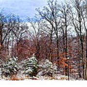 A Winters Scene Art Print