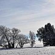 A Wintery Day Art Print