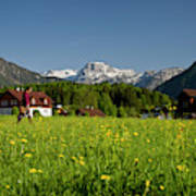 A Woman Walks Through An Alpine Meadow Art Print