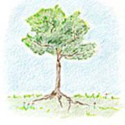 A Young Tree Art Print
