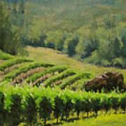 Abacela Vineyard Art Print