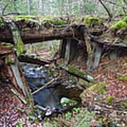 Abandoned Boston And Maine Railroad Timber Bridge - New Hampshire Usa Art Print