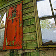 Abandoned Cabin Elkmont - Coming Down Clover Art Print