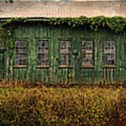 Abandoned Green Sugar Mill Building Dsc04353 Art Print