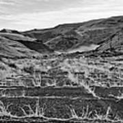 Abandoned Highway - Yakima County - Washington Art Print