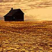 Abandoned Homestead Series Golden Sunset Art Print