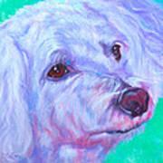 Abby Art Print