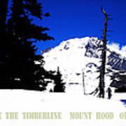 Above The Timberline  Mt Hood  Oregon Art Print by Glenna McRae