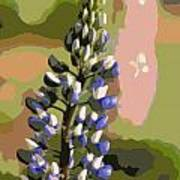 Abstract Blue Lupine Art Print