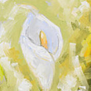 Abstract Calla Lily Art Print