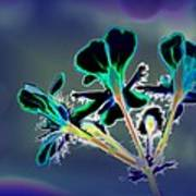 Abstract Flower - Digital Abstract Art Print
