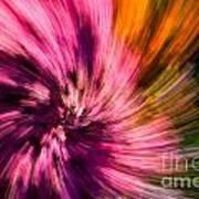 Abstract Flower Spiral Art Print