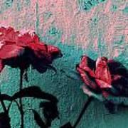 Abstract Hdr Roses Art Print