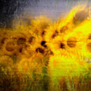 Abstract Of Sunflowers Art Print