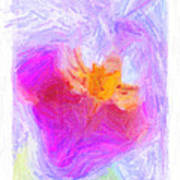 Abstract Orchid Pastel Print by Antony McAulay