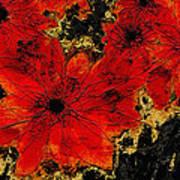 Abstract Red Flower Art  Art Print