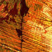 Abstract Wood Grain Art Print