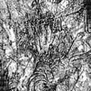 Abstraction B-w 0554 - Marucii Art Print